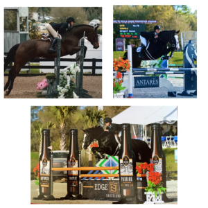 Abi Russo has had a successful winter showing in sunny Florida in both the hunter and jumper rings. Pictured is Cordela fresh off of two clean rounds and an 8th place finish out of 67 in the $25,000 M&S High Child/Adult Jumper Classic. Abi also received good ribbons showing Clacton in the Modified Juniors out of 60 at Hits Ocala.